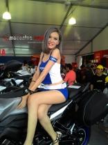 wpid-spg-sexy-yamaha-motogp-sepang-2015-11-macantua.com_.jpg.jpeg