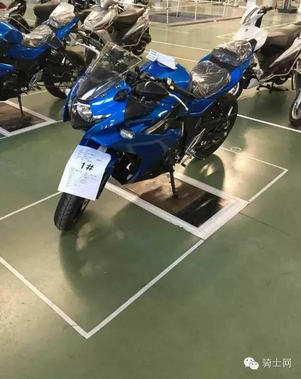 sport-suzuki-fairing-gsx-r250-2.jpg.jpeg
