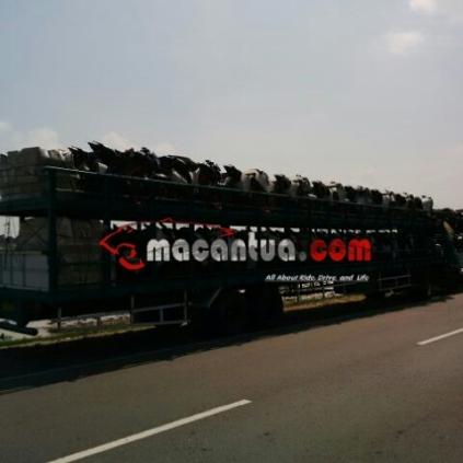 all-new-cb150r-special-edition-delivery-macantua.com12.jpg.jpeg